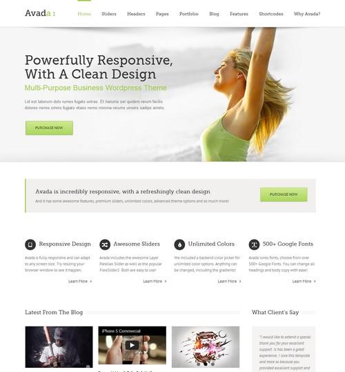 Avada-Premium-WordPress-Themes