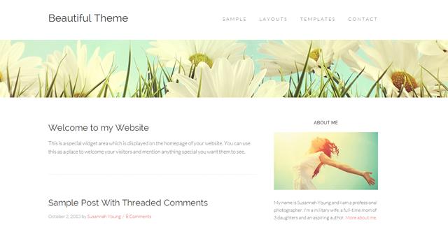 Beautiful-Theme-Mobile-Responsive-HTML5