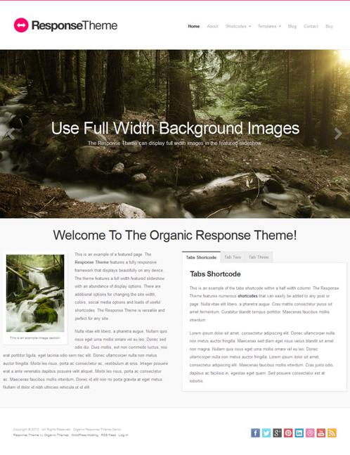 Responsive-WordPress-Theme