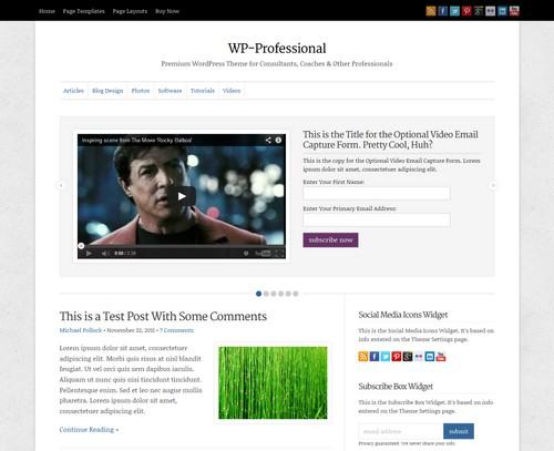 WP-Professional-Premium-WordPress-Theme