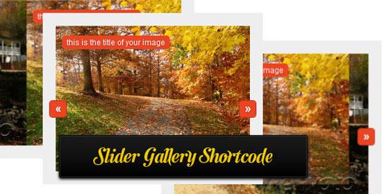 premium-slider-gallery-shor
