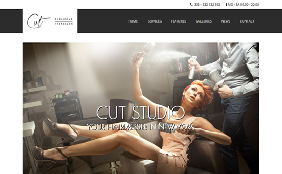cut-salon-wordpress-theme