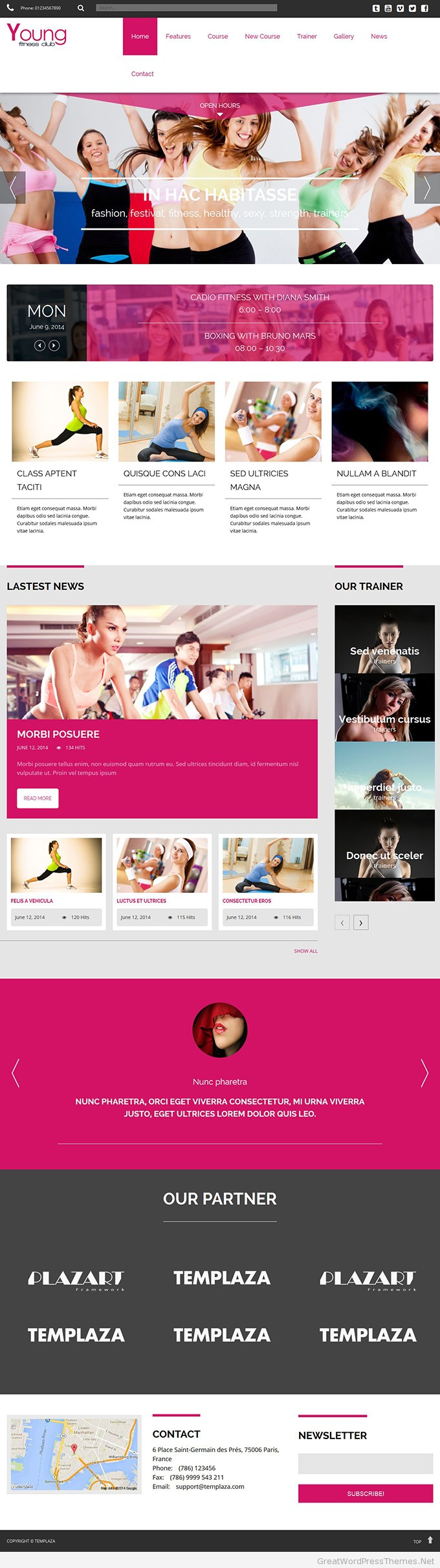 Young-Fitness-Responsive-WordPress-Themes