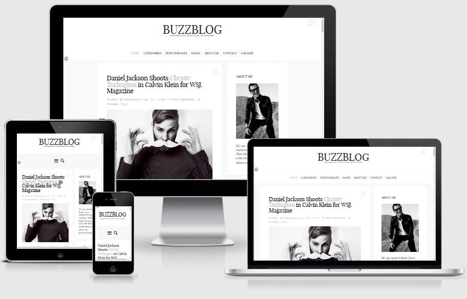 BuzzBlog-theme